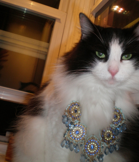 """Sweetpea's mom says while she isn't """"fat,"""" she does enjoy dressing up for the Mardi Paws occasion!"""