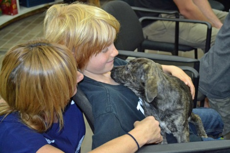 Anonymous Donor Helps Encinitas Family Adopt a Puppy (2)